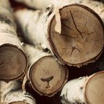 I {heart} Birch Wood…