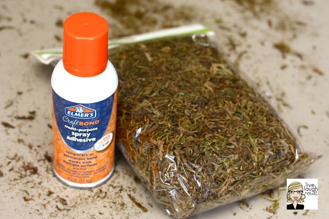 spray adhesive for spanish moss wreath