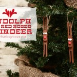 Kid Friendly Ornament | Rudolph the Red Nosed Reindeer