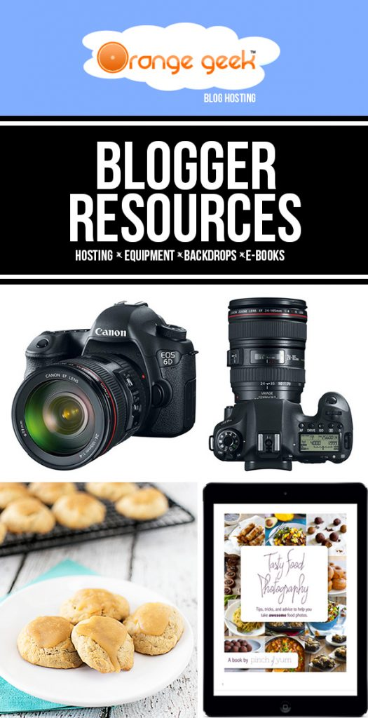 GREAT Blogger Resources! From camera equipment to hosting to backdrops and more.