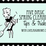 Spring Cleaning Tips | Air Purification