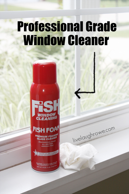 Fish Foam