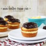Mini Boston Cream Pies