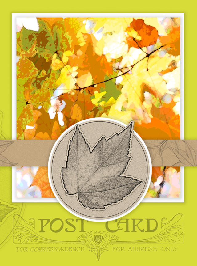 picture regarding Printable Notecard named Tumble Leaves Printable Notecard Visitor Write-up - Dwell Chortle Rowe
