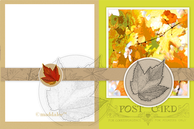 Maple Tree leaves are so colorful and beautiful. The fall leaves on this printable notecard are a lovely reflection of the season and all the beauty that comes with it. livelaughrowe.com