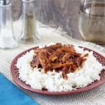 Slow Cooker Hawaiian Pulled Pork