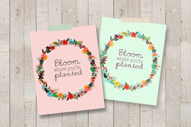 Bloom Where You Re Planted Printable Live Laugh Rowe