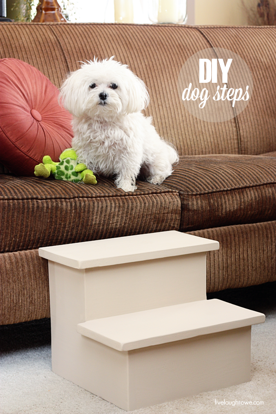 Pamper your furry friend with these DIY Dog Steps