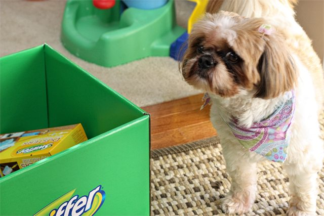 "Swiffer. A pet owners ""other"" best friend! I love that I can keep my floors looking like new with the help of Swiffer. #swiffer effect"