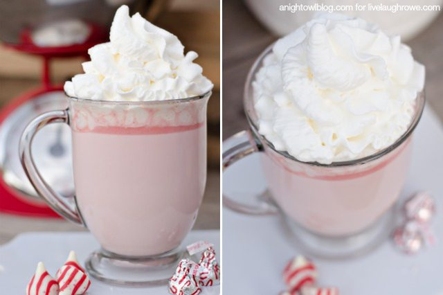 Warm up with a cup of this delicious Candy Cane Hot Cocoa!  Recipe from A Night Owl for livelaughrowe.com #hotcocoa