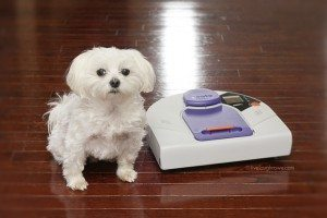 Schedule your vacuuming with Neato Robotics ® and enter the Best for Pets Sweepstakes!