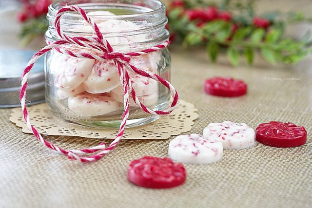 The perfect holiday treat with Wilton Chocolate and crushed peppermint! Peppermint Bark Candy to fill for your candy dishes or gift giving. www.livelaughrowe.com #christmas #peppermint