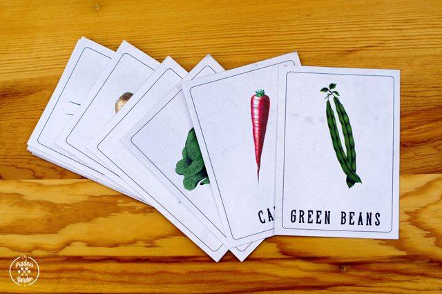 vintag vegetable nonmencalture cards