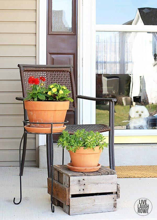 Tips for planting flowers in pots! I discovered Monrovia flowers at recent nursery and decided to do some some springtim planting. www.livelaughrowe.com