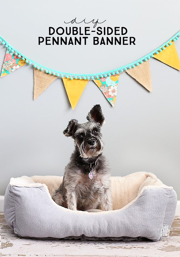 I love pennant banners! This double-sided pennant banner tutorial is perfect and makes a great photography backdrop or fun addition to any space. livelaughrowe.com