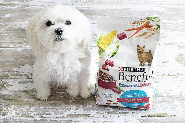 Knowing our dogs are happy and healthy is important to us! Filling their bowls with the goodness of healthy and the joy of happy means we've scored! livelaughrowe.com