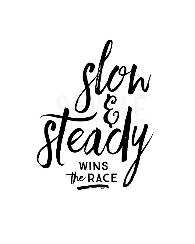 An essay on slow and steady wins the race