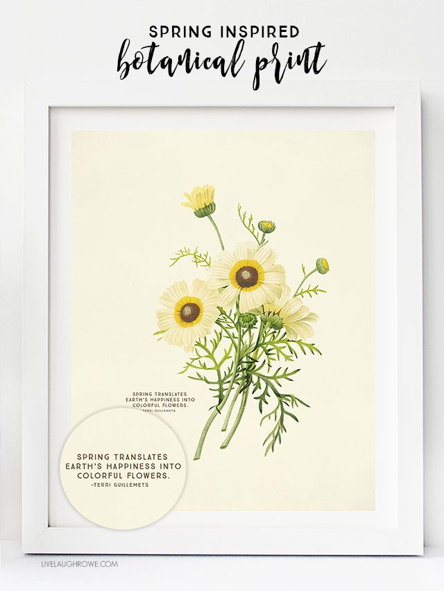 Free Printable Wall Art Choose From Two Spring Botanical Prints