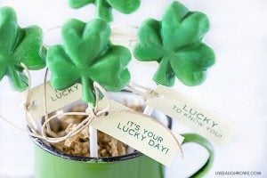 These chocolate shamrock lollipops and printable labels would be perfect for a St. Patrick's Day class treat or party favor! livelaughrowe.com