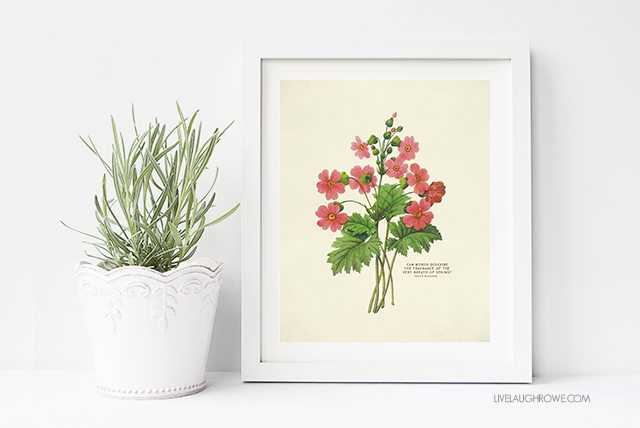 FREE Printable Wall Art. Choose from two Spring Botanical Prints!