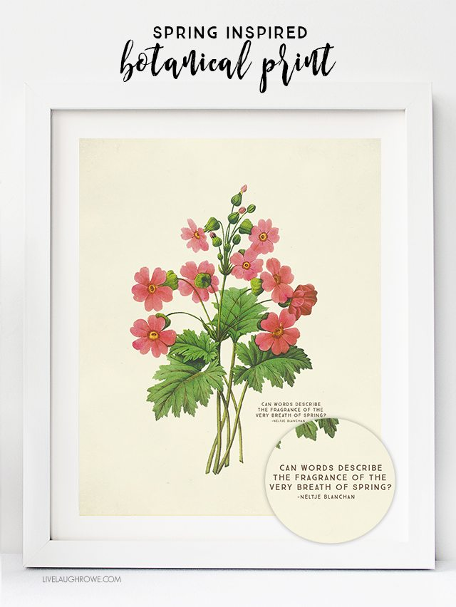 Free Printable Wall Art Choose From Two Spring Botanical