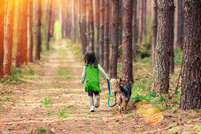 Finding Joy in the Little Things -- by taking your dog (or a friends dog) for a walk. livelaughrowe.com