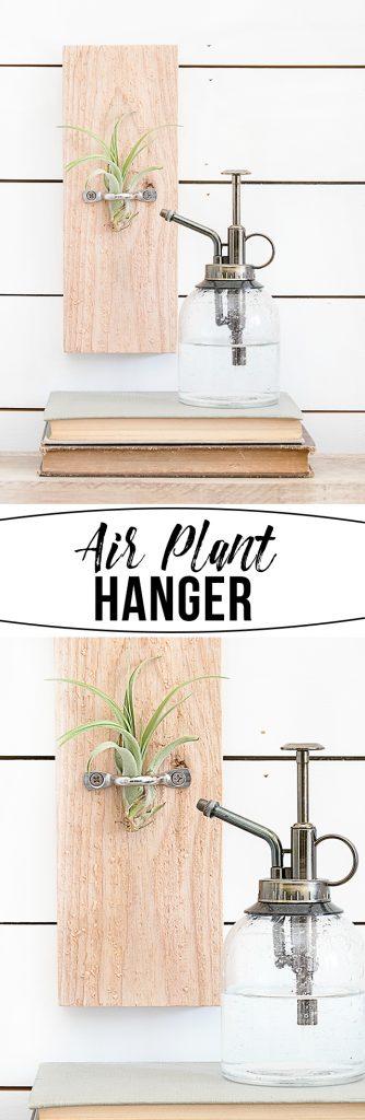 Diy air plant hanger live laugh rowe for Air plant wall hanger