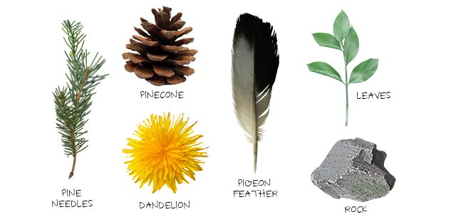 Fantastic nature themed Scavenger Hunt for kids! Grab some snacks and let's get started. livelaughrowe.com