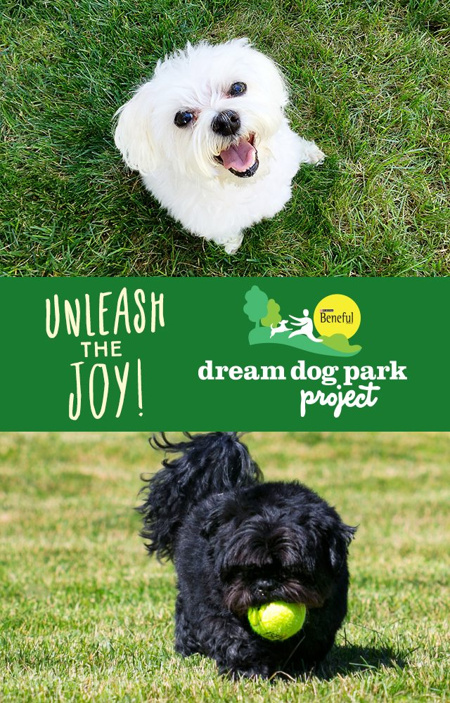 Learn more about the Beneful Dream Dog Parks Project and how you can be a part of it! livelaughrowe.com #DreamParkProject