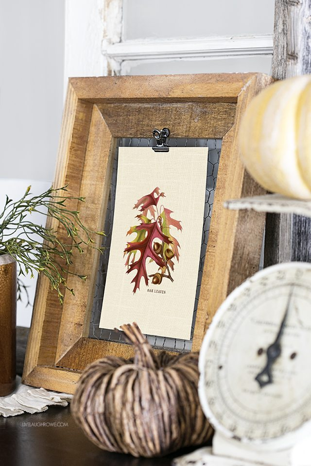 Love this fall vignette and the festive oak acorns and leaves printable. livelaughrowe.com