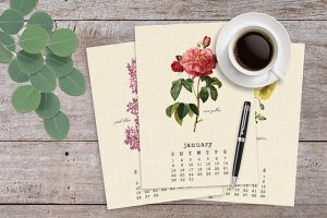 Vintage Botanical 2017 Calendar