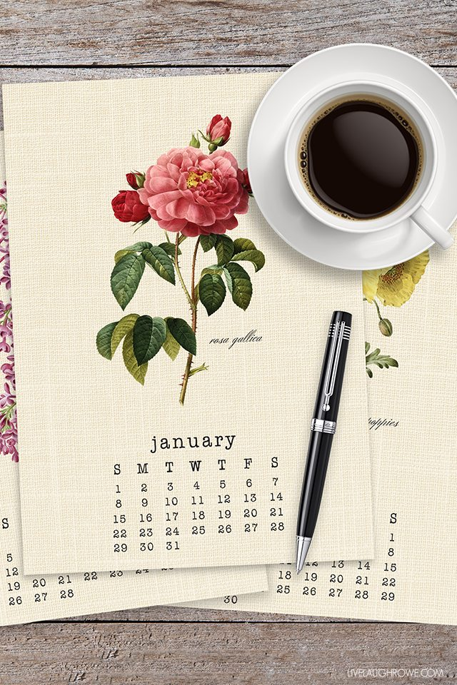 Beautiful Vintage Botanical 2017 Calendar. A perfect addition to your desk or bulletin board! livelaughrowe.com