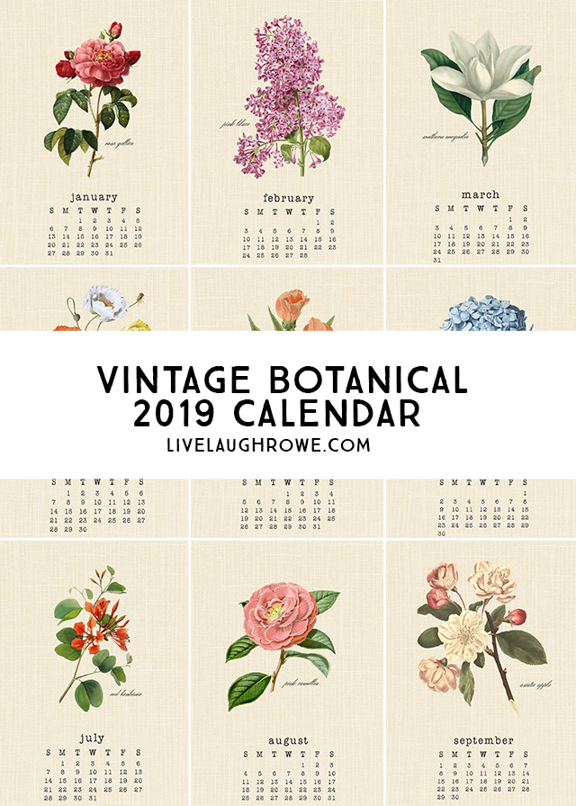 Beautiful Vintage Botanical 2019 Calendar. A perfect addition to your desk or bulletin board! livelaughrowe.com