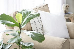 Slipcover Conundrum | Comfort Works Slipcover Review