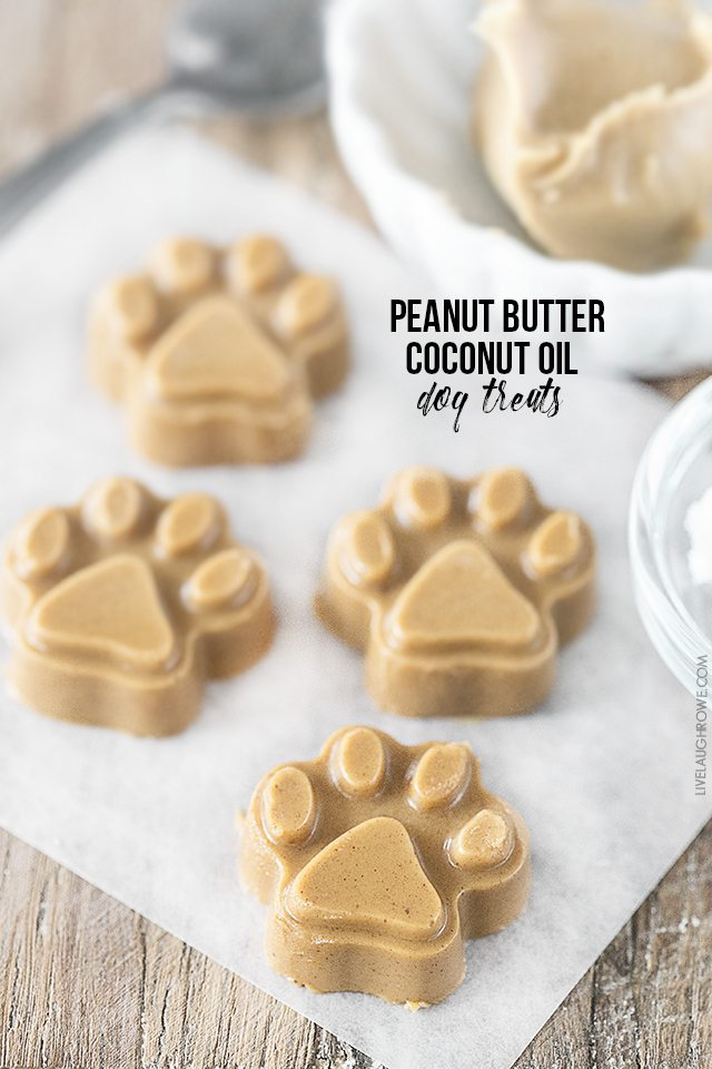 Treat your dogs to these yummTreat your dogs to these yummy homemade Peanut Butter Coconut Oil Dog Treats! They'll be begging for more. livelaughrowe.com