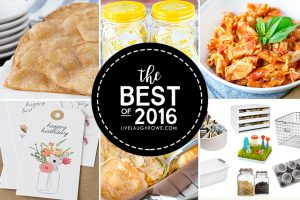 The Best of 2016 at livelaughrowe.com. From printables to recipes to gift ideas, you're sure to be inspired.