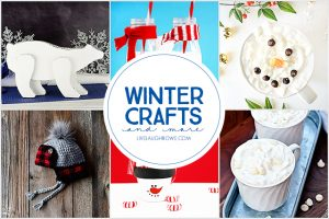 Winter Crafts and More | Party Time!