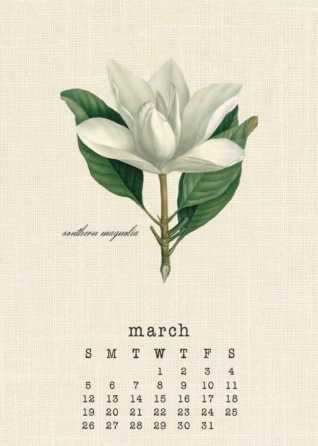 Beautiful March 2017 Botanical Calendar. Print yours at livelaughrowe.com