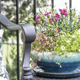 Simple ways to spruce up your patio with COLOR! livelaughrowe.com