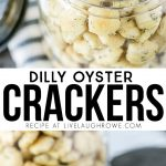 This Dilly Oyster Cracker Recipe is a delicious snack that won't last long. Flavorful and easy too. livelaughrowe.com