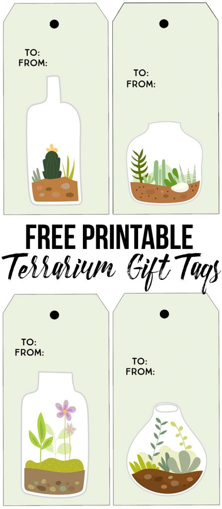 printable succulent terrarium gift tags live laugh rowe