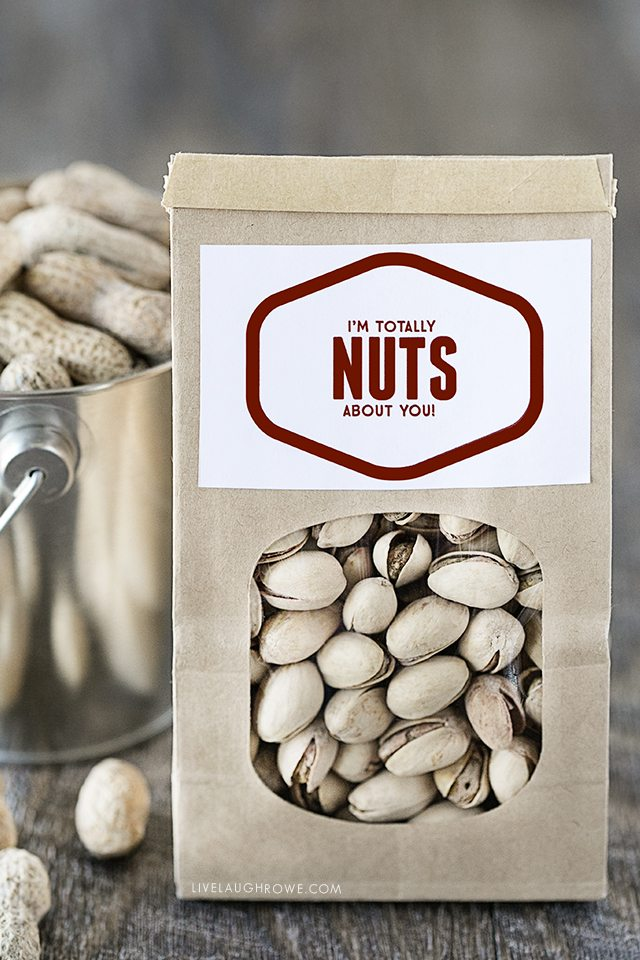 Fun 'Nuts About You' printable for Valentine's Day or just because. livelaughrowe.com