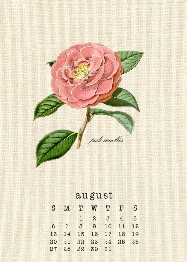 Beautiful Botanical August 2017 Calendar. livelaughrowe.com