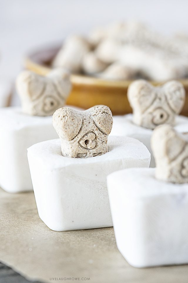 Delicious Frozen Dog Treats that include only THREE ingredients: peanut butter, banana and greek yogurt. Your fur babies are sure to beg for more. Recipe at livelaughrowe.com