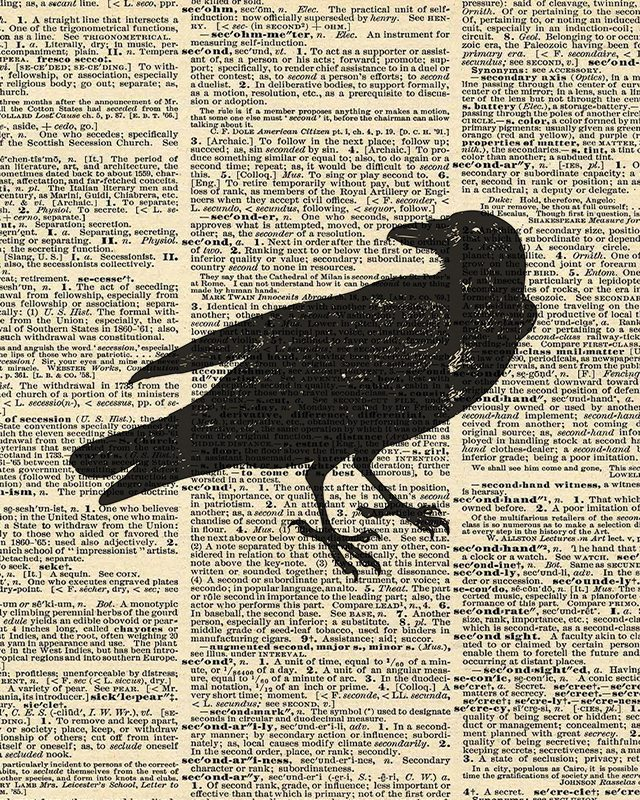 photo regarding Vintage Halloween Printable known as Halloween Crow Decor Absolutely free Printable - Reside Snicker Rowe