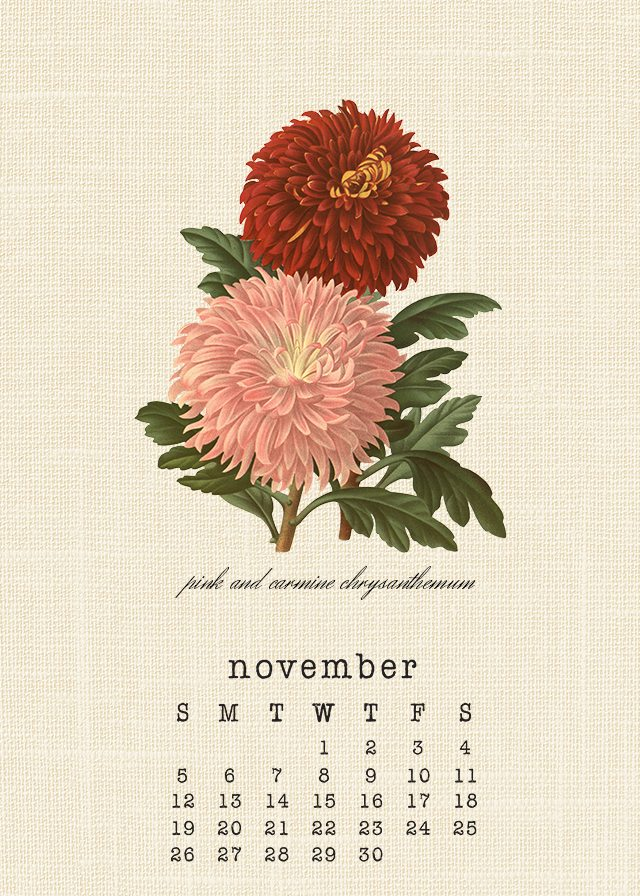 November 2017 Botanical Calendar. Grab your free printable calendar at livelaughrowe.com