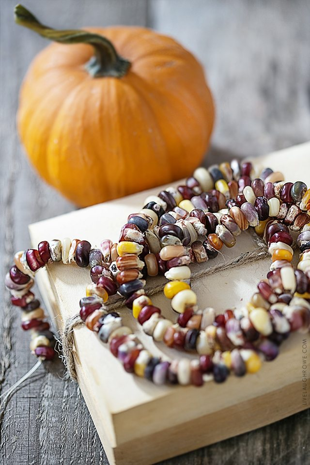 Lifestyle blogger, Kelly Rowe, has created this decorative Autumn Garland using Indian Corn Seeds. This project is one you'll want to add to your fall to-do list. Find out more at livelaughrowe.com