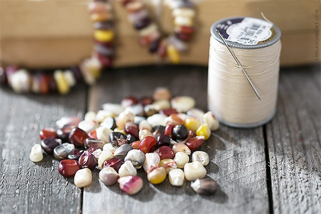 Lifestyle blogger, Kelly Rowe, shows you how to make a lovely Autumn Garland using Indian Corn Seeds. This project is one you'll want to add to your fall to-do list. Find out more at livelaughrowe.com