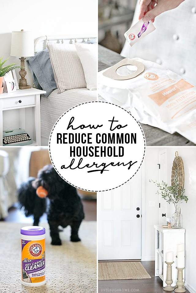 How to Reduce Common Household Allergens? Check out these 7 ways to keep the allergens at bay and keep your home smelling fresh! livelaughrowe.com
