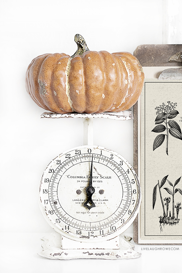 Love the simplicity of a pumpkin sitting on an old vintage scale! Did you see the Pumpkin Spice Printable that is displayed next to it? It's a FREE 8x10 print. livelaughrowe.com